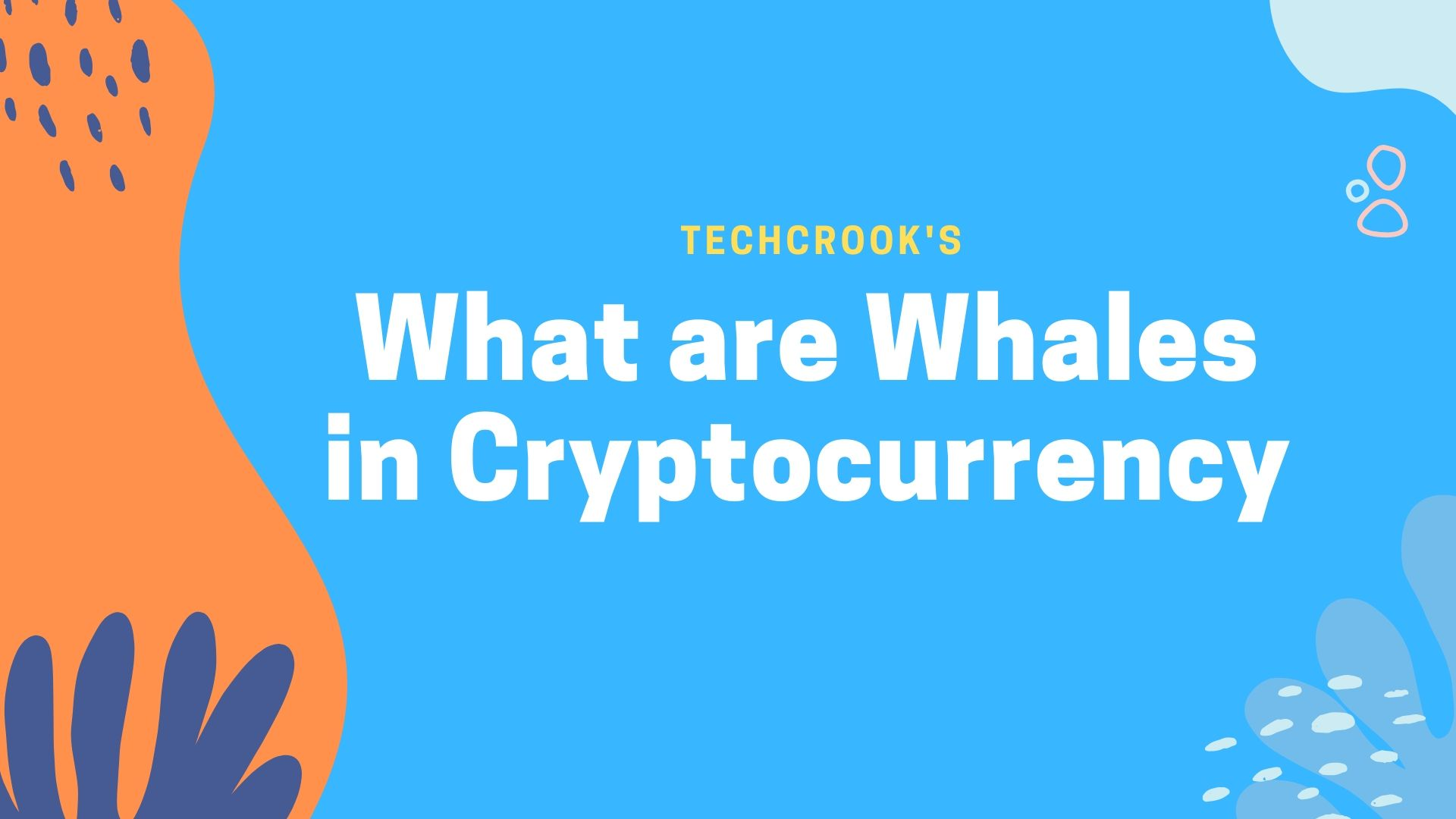 What do Whales indicate in Cryptocurrency